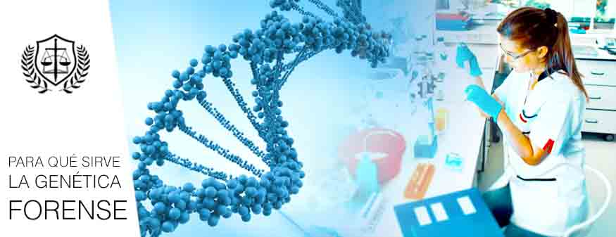 PARA QUE SIRVE LA GENETICA FORENSE