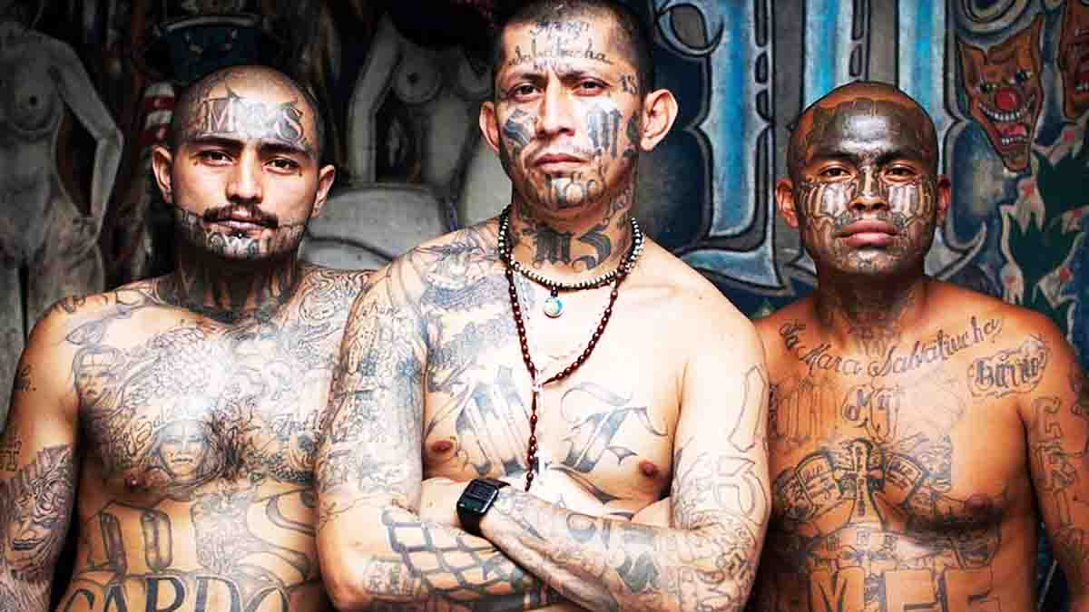Bandas Criminales, la mafia callejera llega a España