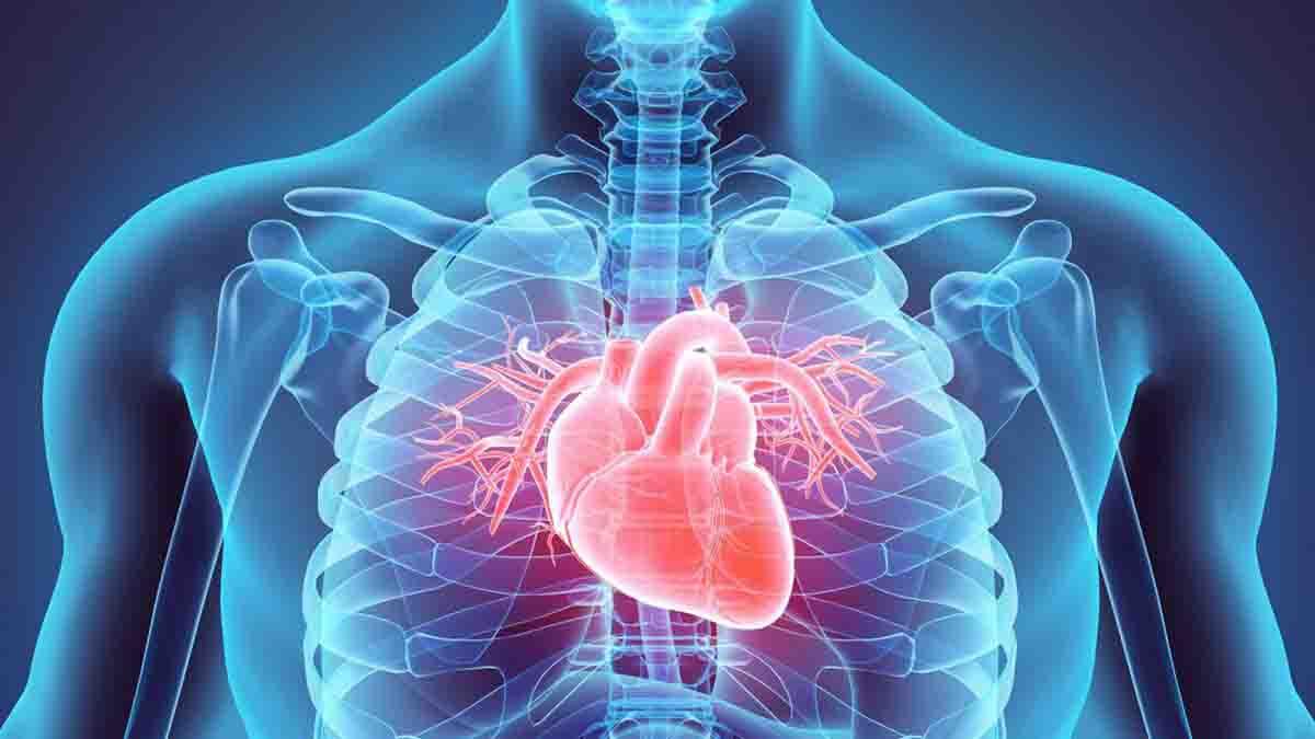 Perito en Cardiología, fallos en diagnóstico y mala praxis