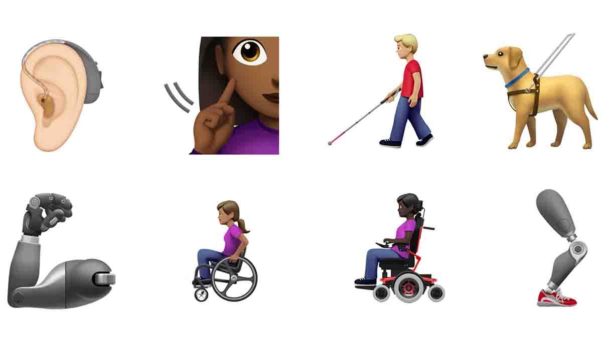 Perito en discapacidad