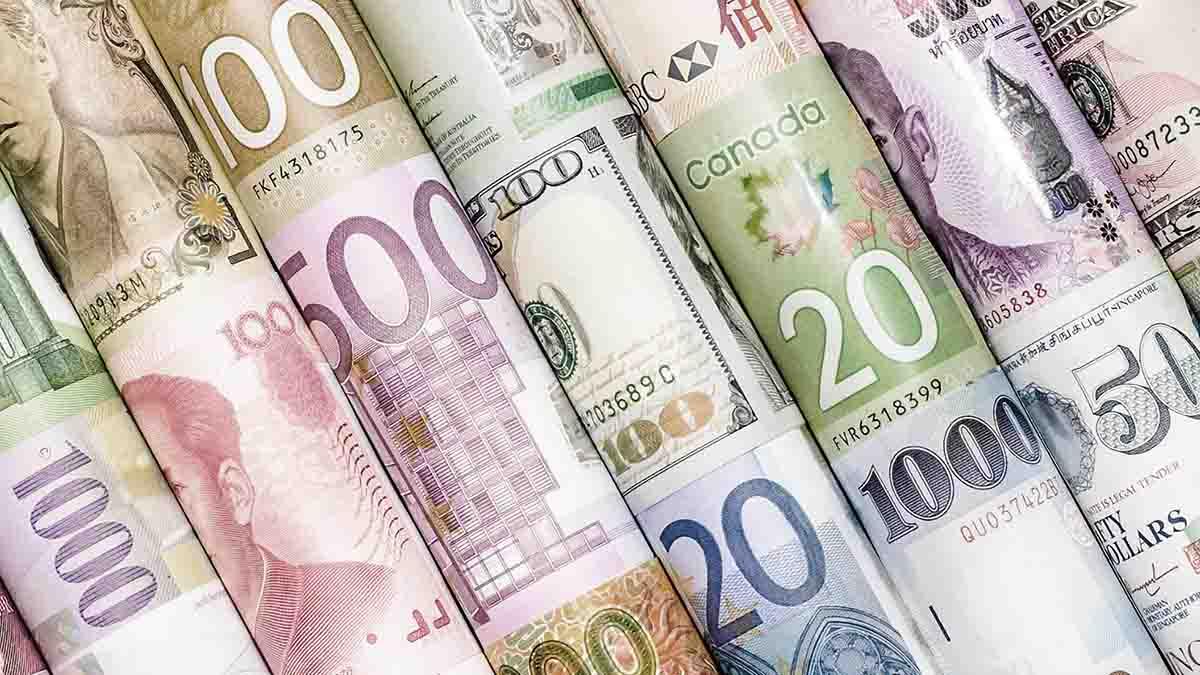 Perito en Divisas y aplicación del tipo de cambio