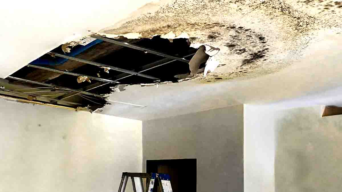 Perito en Filtración de Agua, daños viviendas capilaridad