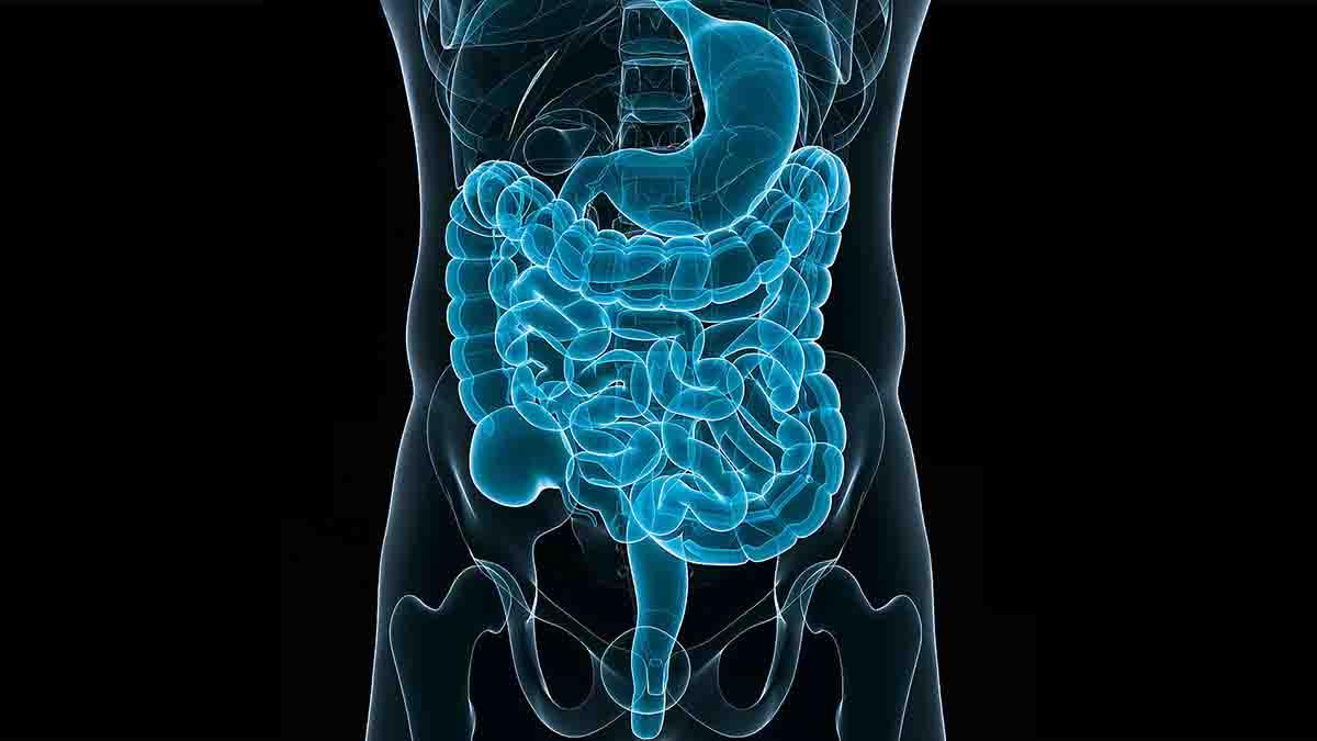 Perito en Gastroenterología Pediátrica. Errores médicos
