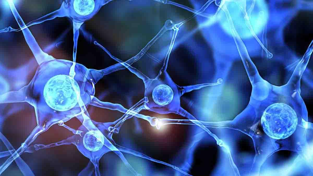 Perito en Neurología Pediátrica - Cerebro, columna, nervios