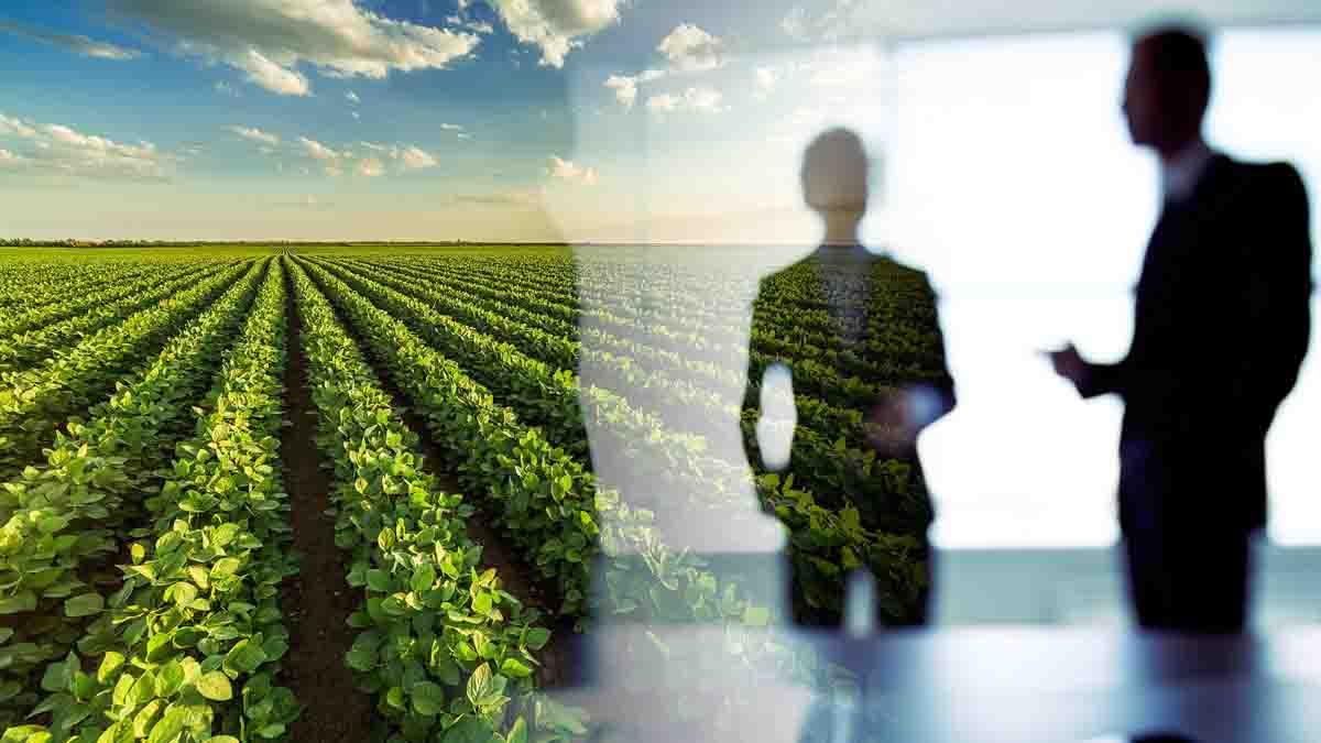 El Perito Agrícola y el control legal de los terrenos