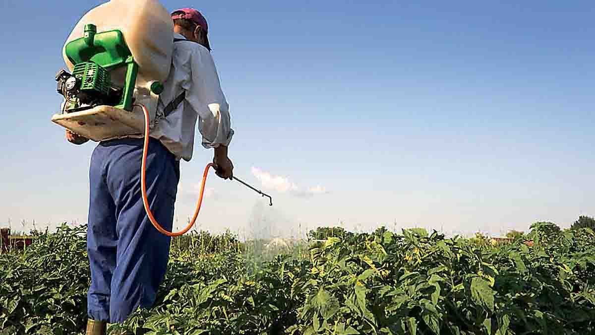 Perito en uso de Pesticidas o Plaguicidas y su análisis