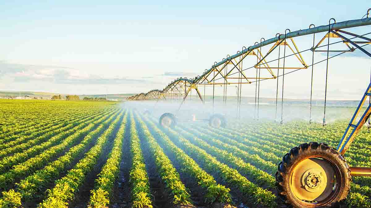 Perito Riego de cultivos, uso del agua. Valoraciones
