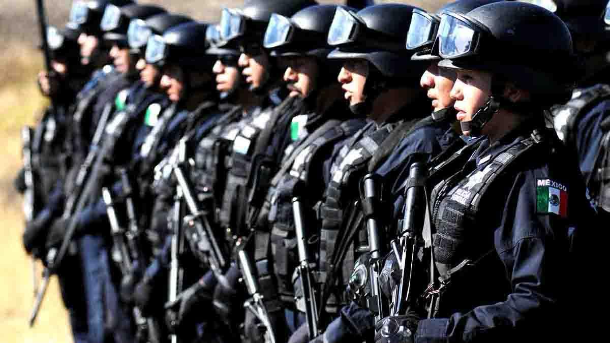 Perito en Seguridad Pública. Homicidios, violencia, robos