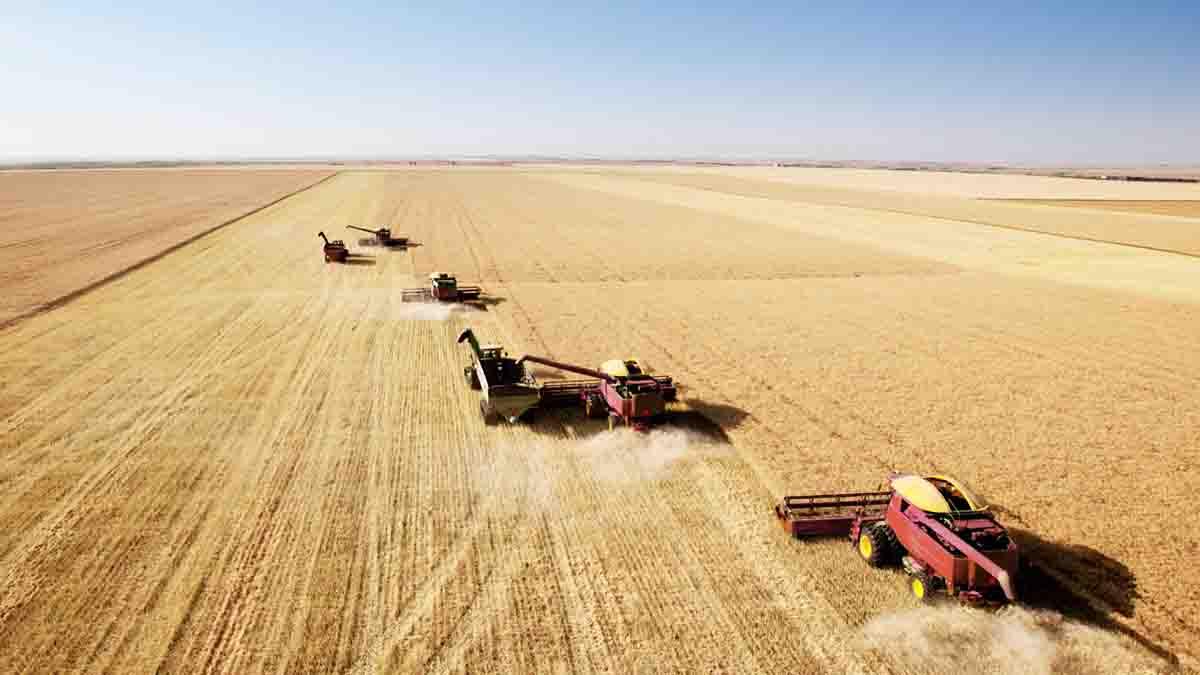Perito en Valoración Agraria. Estudio de explotación agraria