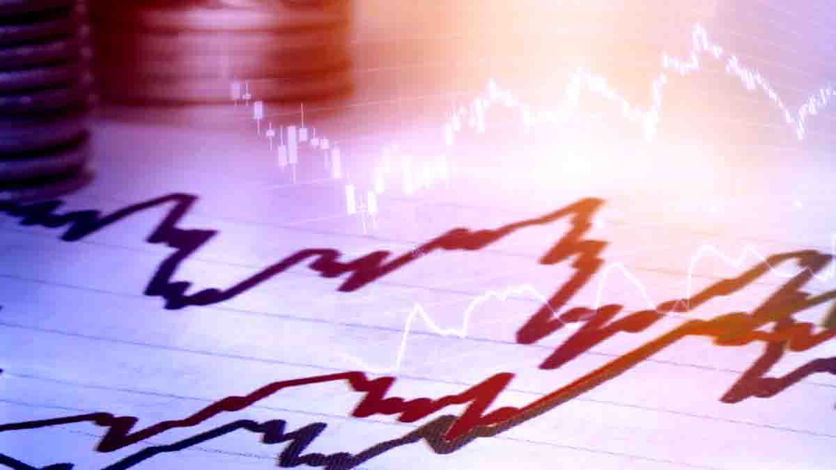Perito en valoración económica. Importancia del bien