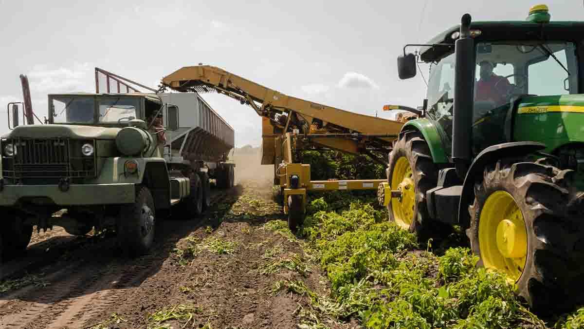 Perito en Accidentes Agrícolas con maquinaria, fungicidas