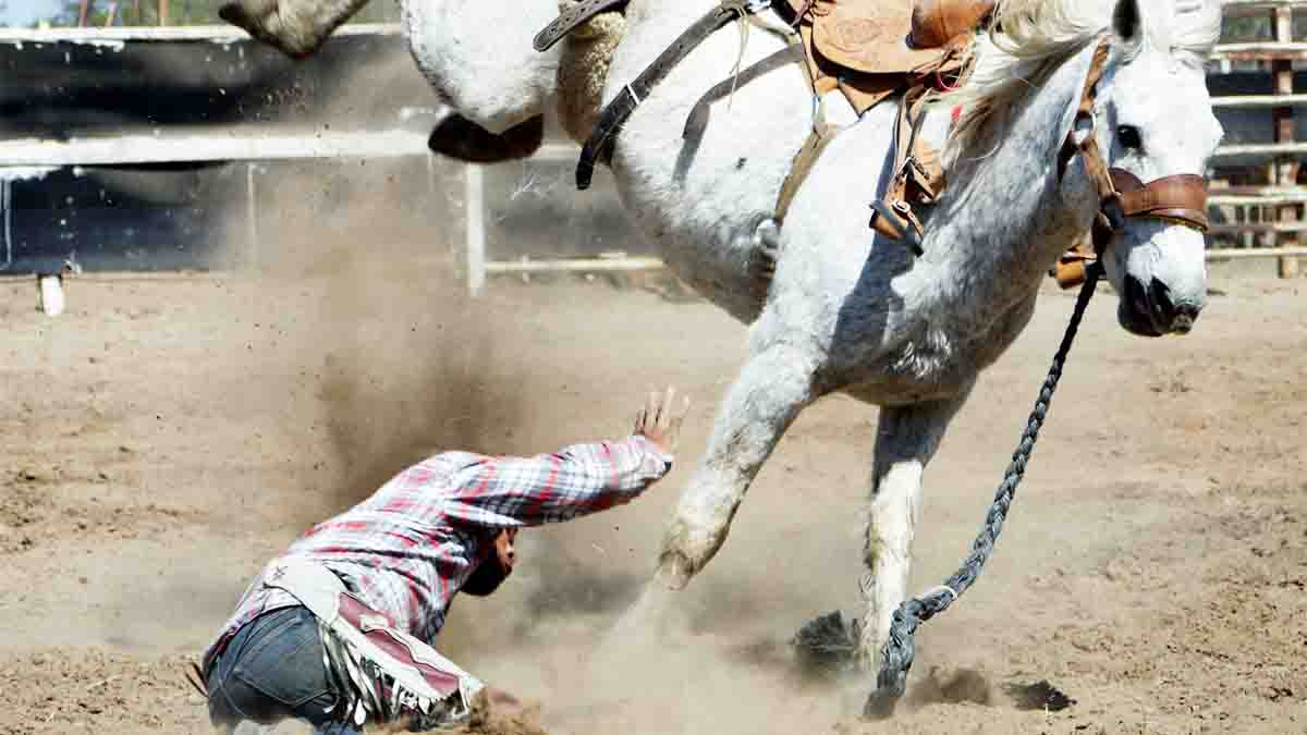 Accidente de Equitación. Reclamar siniestro con caballos