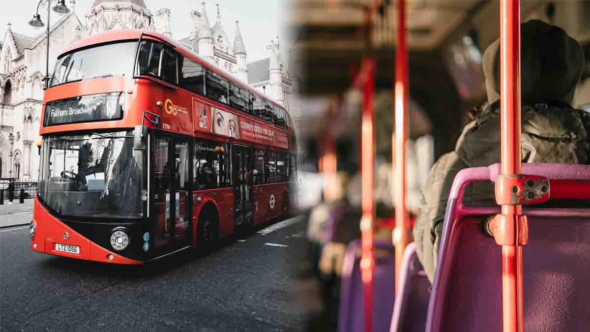 Perito en Autobús. Accidentes, estaciones, funcionamiento