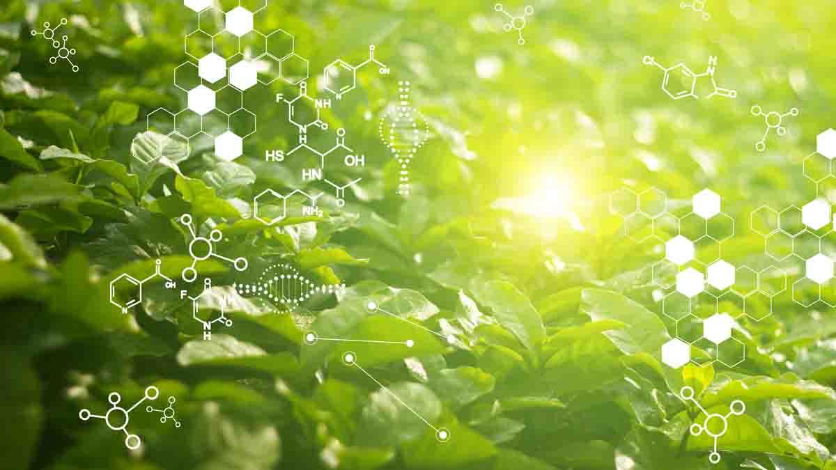Bioquímica Clínica - Perito Bioquímico Clínico