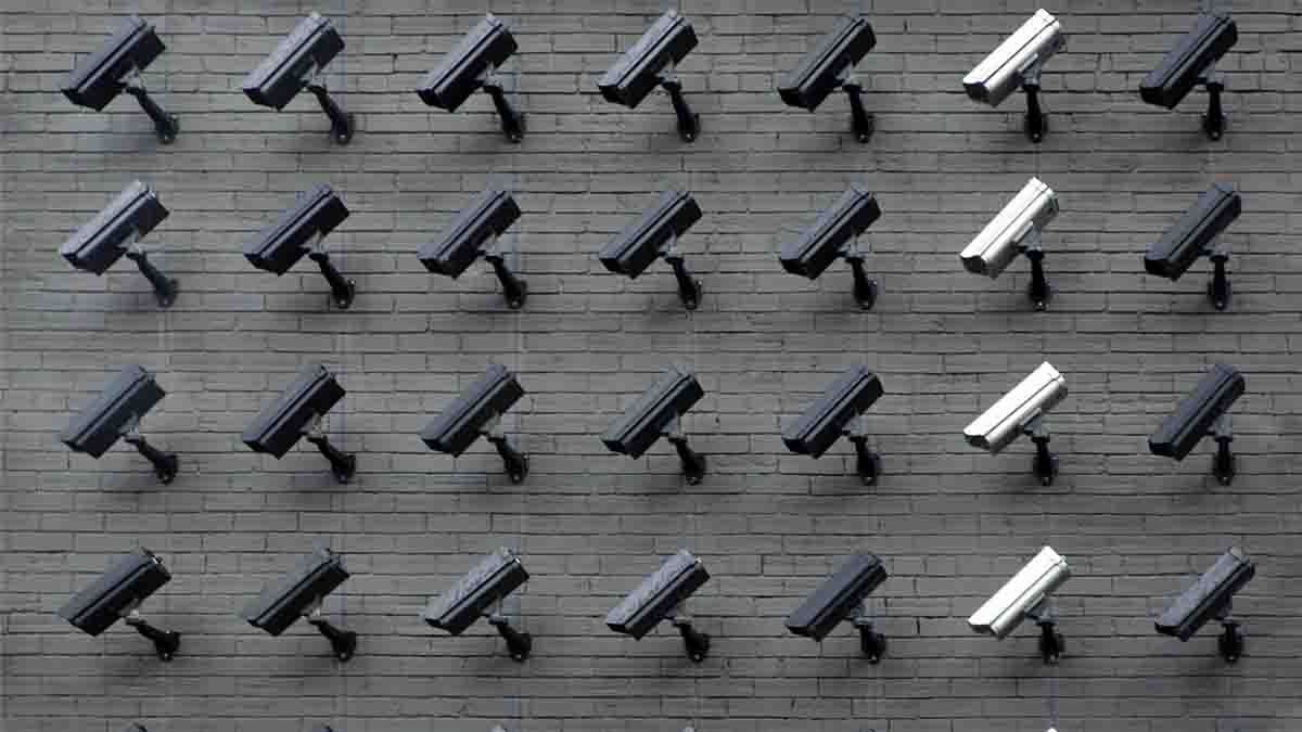 Perito en Derecho a la Intimidad: vulneración de privacidad