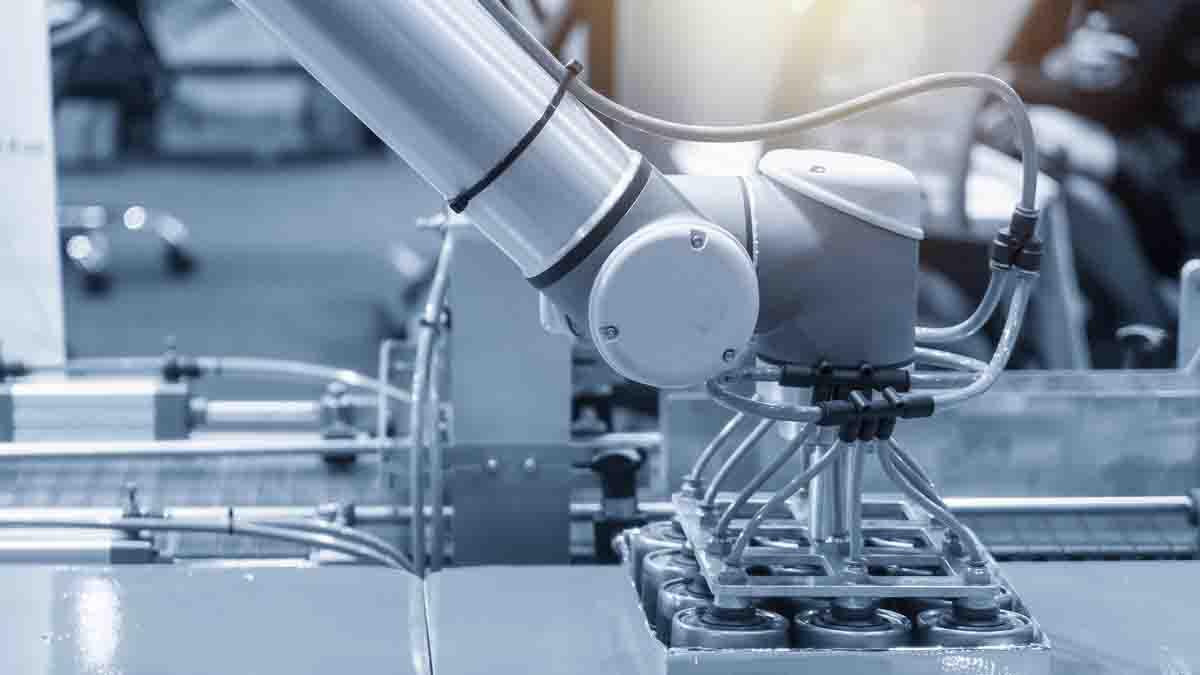 Perito en Ingeniería Biomecánica y dinámica del movimiento
