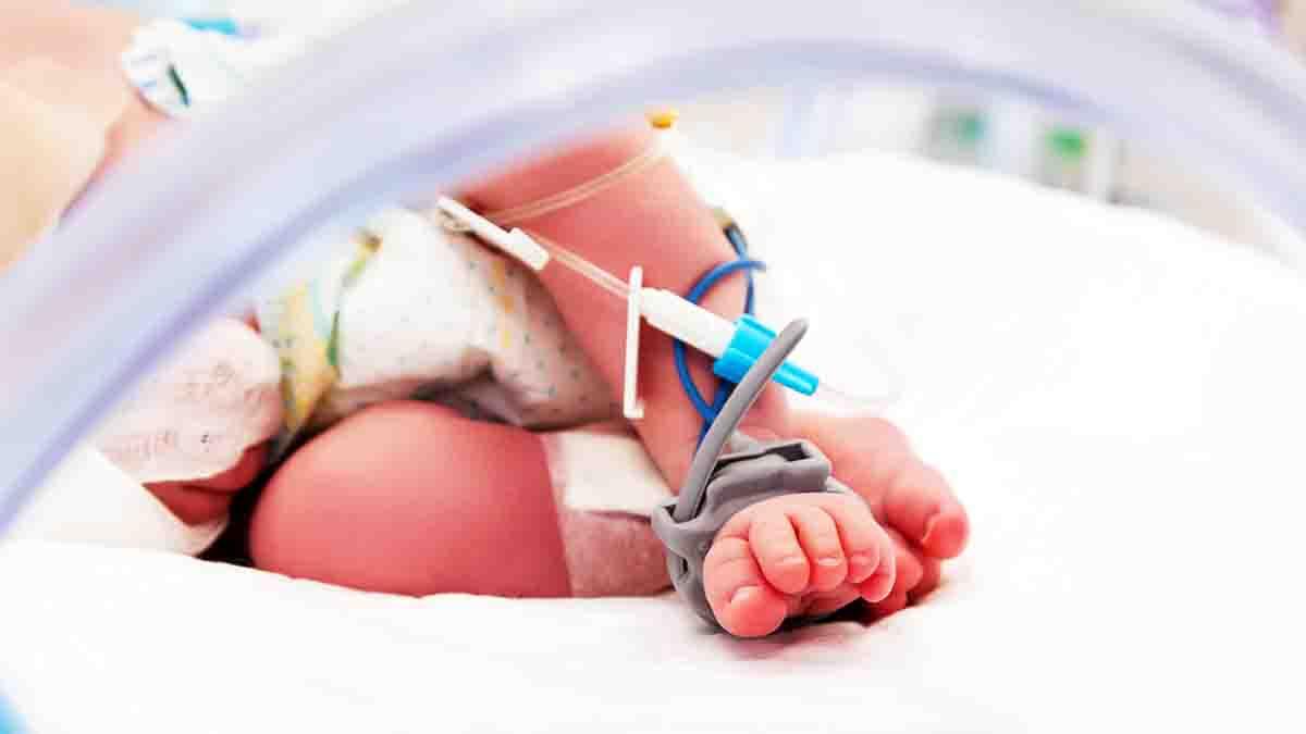 Perito en Medicina Neonatal: cuidado de neonatos, protocolos