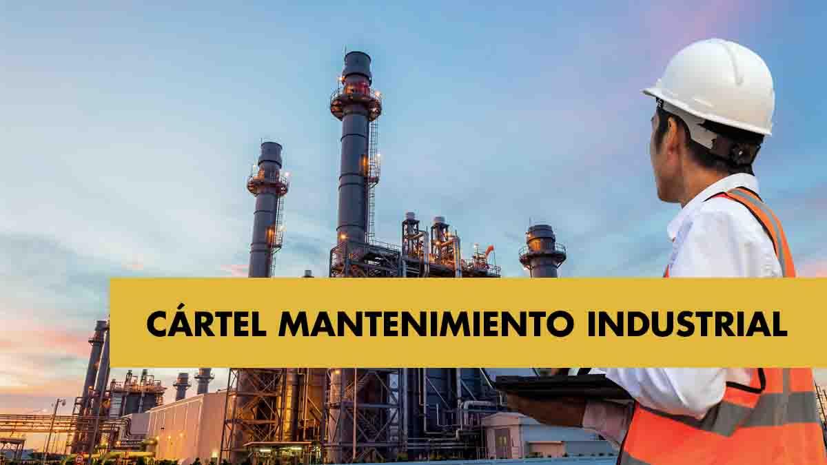 Cártel del montaje y mantenimiento industrial: el informe pericial