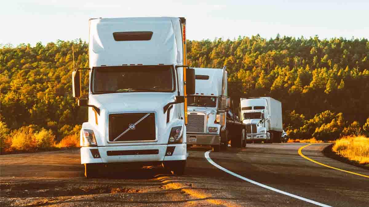 Perito en Transporte en Camión: mercancía y carga