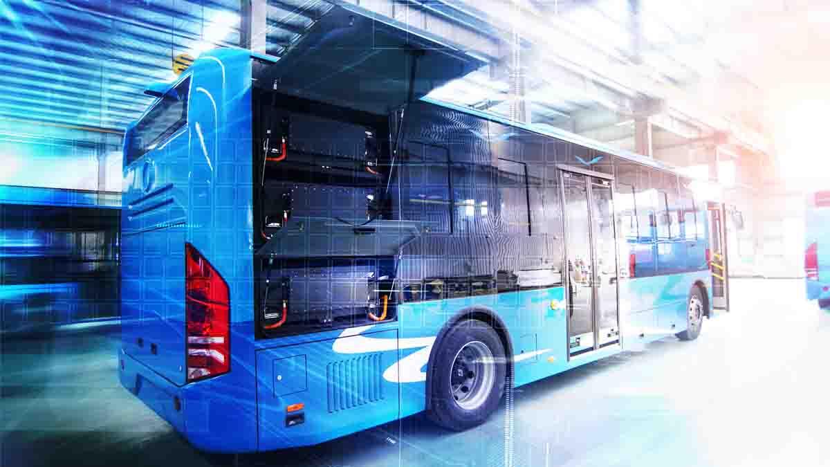 Perito en Transporte Público colectivo. Servicio y problemas