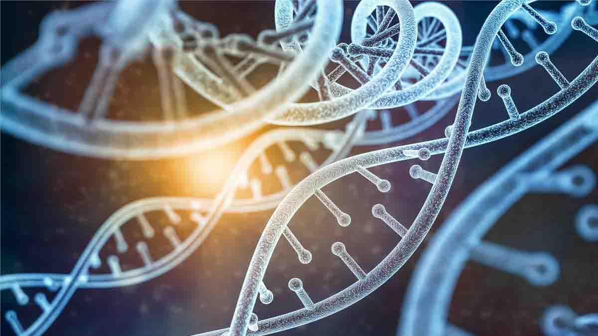 Estudio de ADN: La prueba pericial que puede hacer ganar un juicio